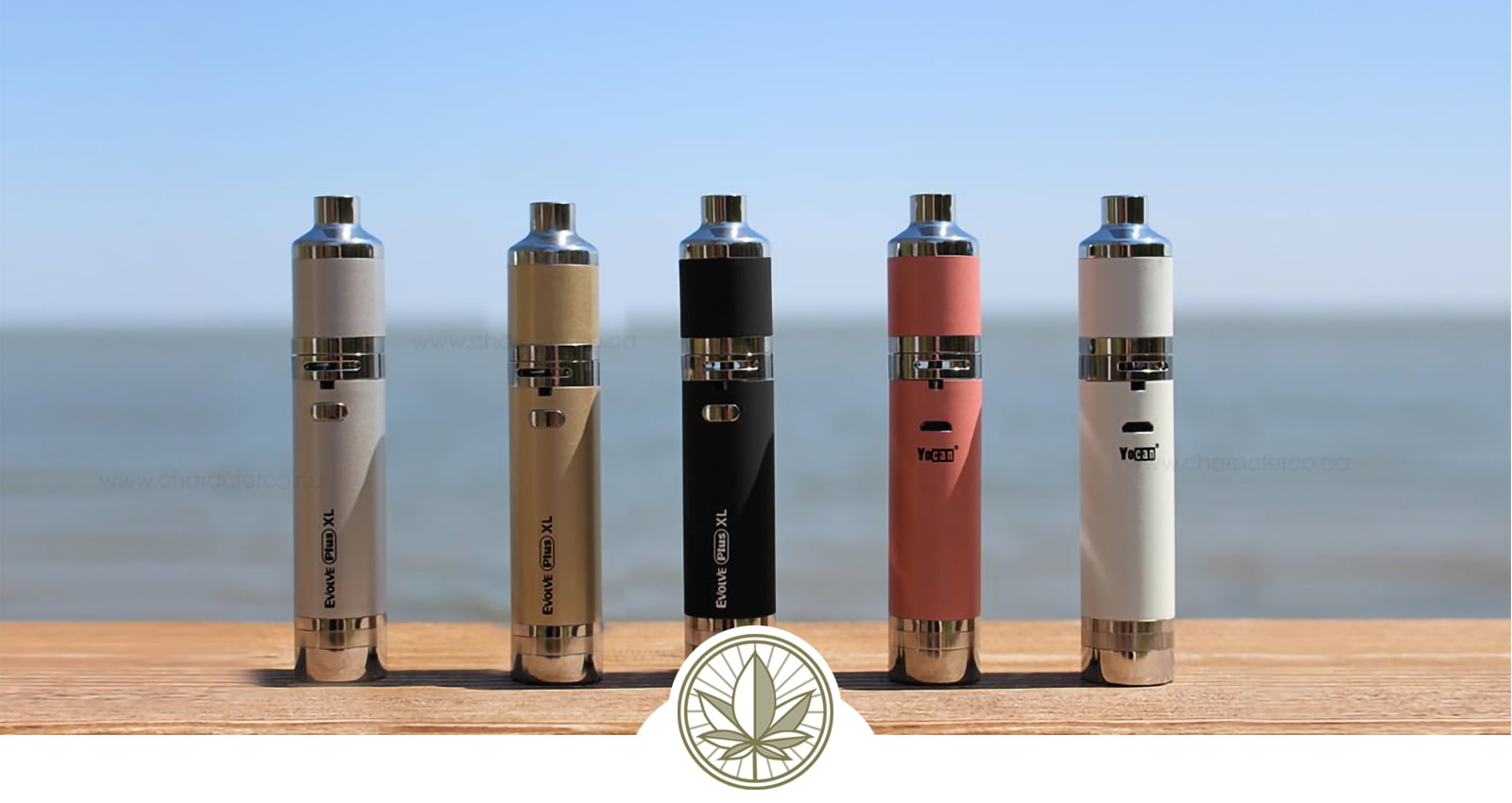 Review of the Yocan Evolve Plus XL- A1