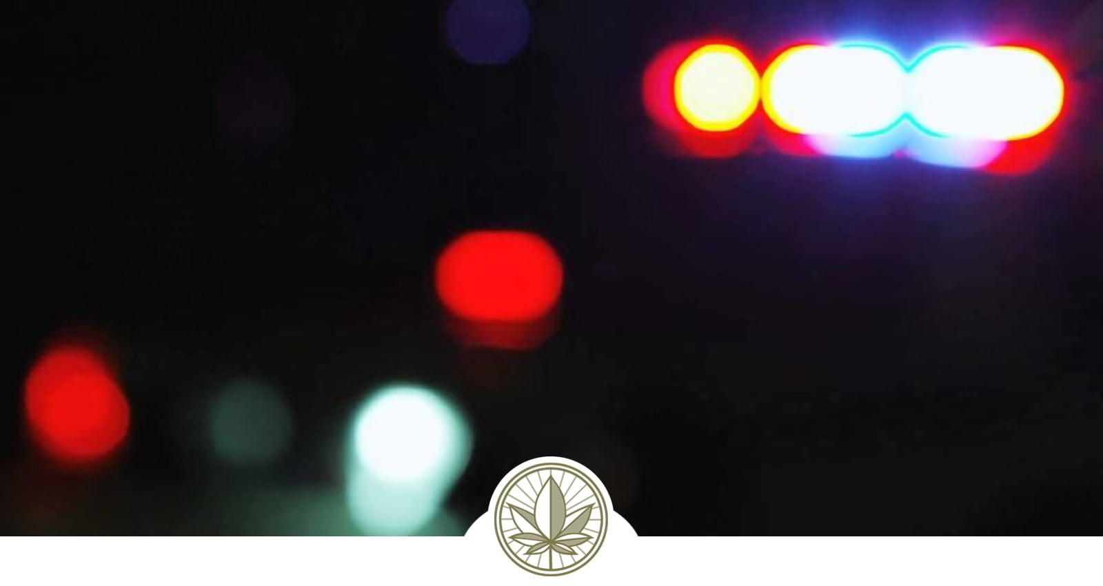 A List of Cannabis Fines and Infractions